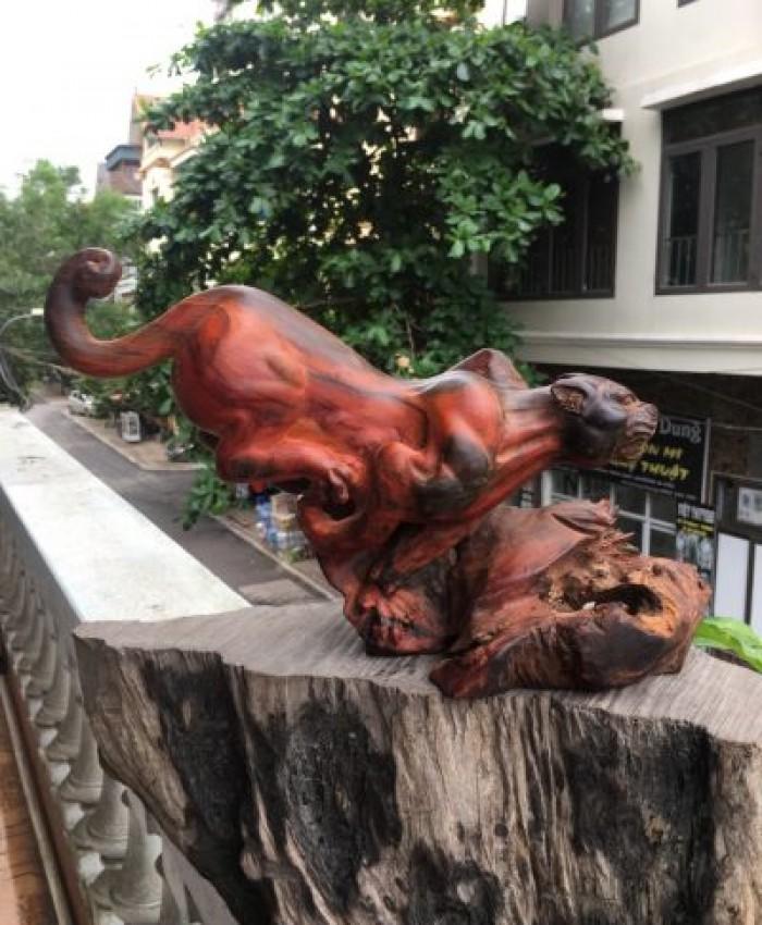 Tuong Con Bao