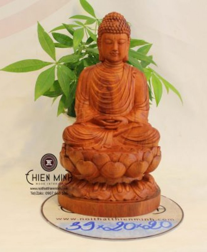 Tuong Phat Thich Ca N