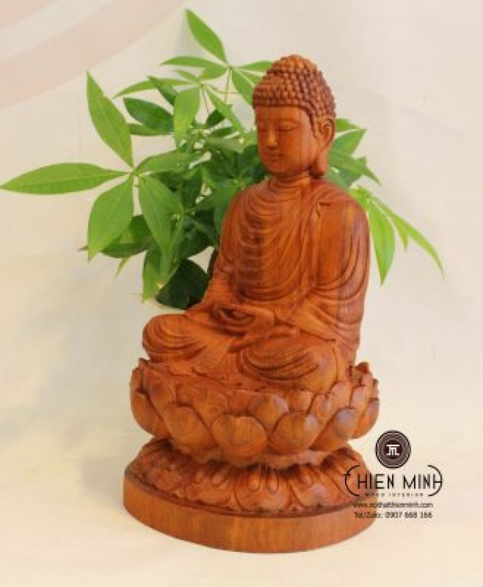 Tuong Phat Thich Ca A